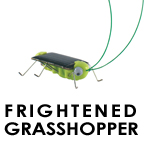grasshopper.jpg